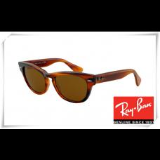 Ray Ban RB4169 Laramie Sunglasses Brown Frame Brown Lens