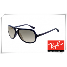 Ray Ban RB4162 Sunglasses Black Frame Light Grey Gradient Lens
