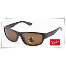 Ray Ban RB4169 Sunglasses Brown Frame Brown G-15 Lens