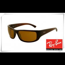 Ray Ban RB4176 Sunglasses Dark Blue Frame Green Lens